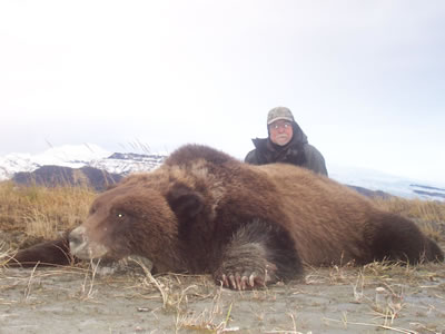 Giant Alaskan Brown Bear
