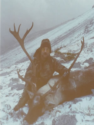 Trophy Mountain Caribou from northern BC